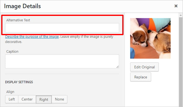 How To Write Perfect Image Alt Tags In WordPress