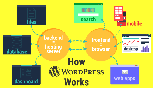 How to Reset WordPress Websites Quickly (Including Multisite)