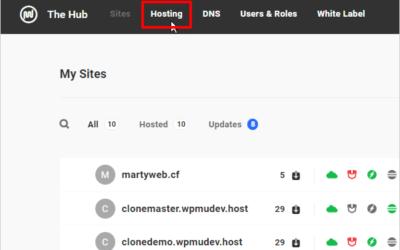 Web File Management Comes to WPMU DEV Hosting